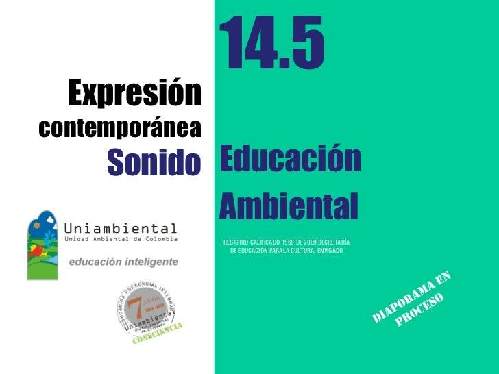 14.5  Expresióncontemporánea     Sonido Educación            Ambiental                REGISTRO CALIFICADO 1568 DE 2009 SEC...