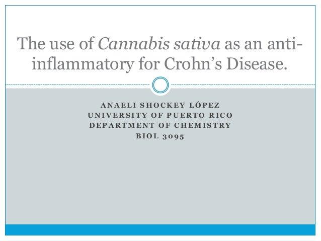 14. anaeli. use of cannabis on ibd