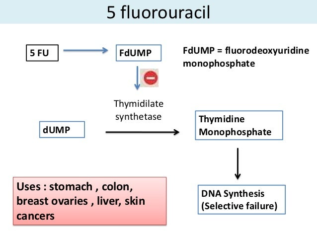 Image Result For  Fluorouracil Colon Cancer
