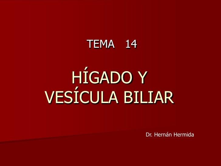 El hígado y la vesícula biliar