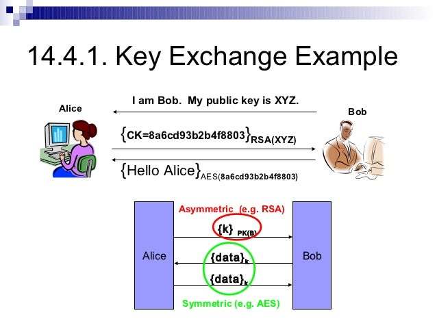 an examination of the diffie hellman key exchange protocol