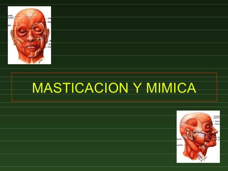 MASTICACION Y MIMICA