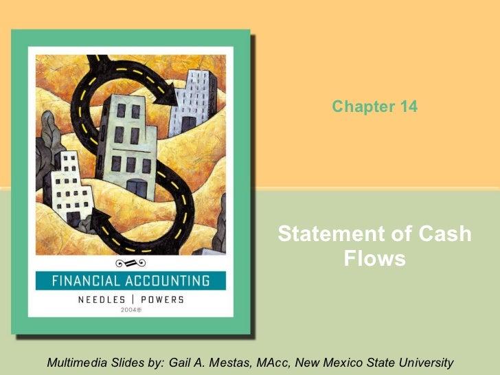 14   Statement Of Cash Flows