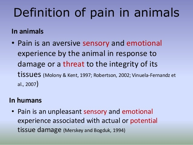 definition of pain Definition of pain, painful, and painfulness from the king james bible dictionary.