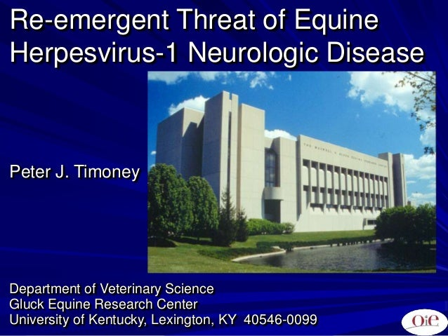 Re-emergent Threat of Equine Herpesvirus-1 Neurologic Disease Peter J. Timoney Department of Veterinary Science Gluck Equi...