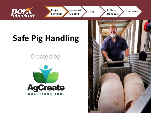 In-Barn Handout End Product Safe Pig Handling Created by Project Summary Lesson with Quizzing PPT In-Barn Handout Summary