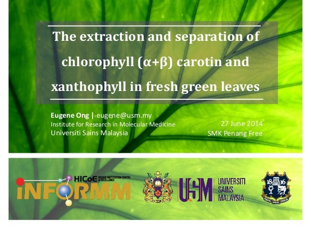 The extraction and separation of chlorophyll (α+β) carotin and xanthophyll in fresh green leaves Eugene Ong | eugene@usm.m...