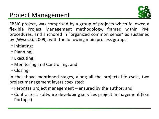 Write my master thesis in project management