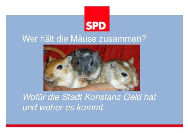 Wer hält die Mäuse zusammen?  Wofür die Stadt Konstanz Geld hat  und woher es kommt.