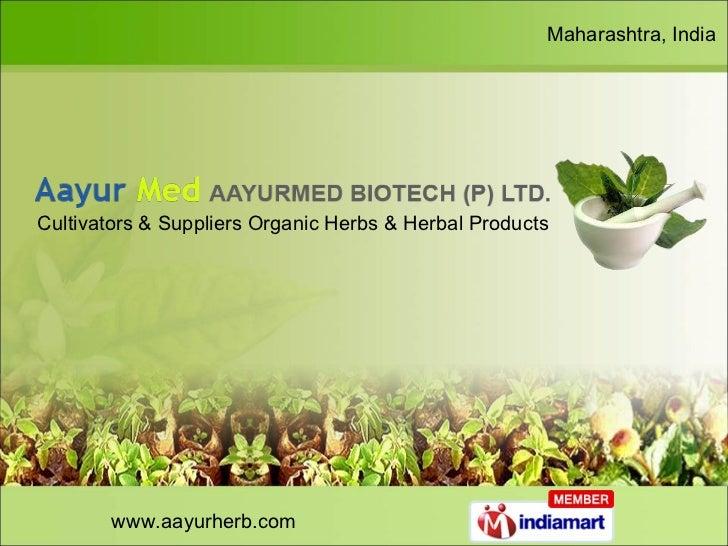 www.aayurherb.com Maharashtra, India Cultivators & Suppliers Organic Herbs & Herbal Products