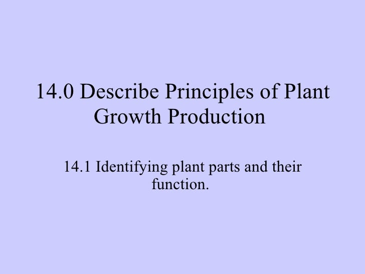 14.0 Describe Principles of Plant Growth Production  14.1 Identifying plant parts and their function.