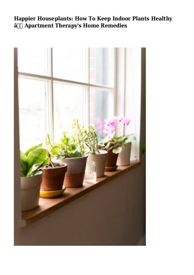 happier houseplants how to keep indoor plants healthy apartment th. Black Bedroom Furniture Sets. Home Design Ideas