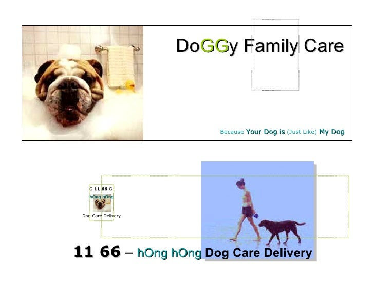 11 66  –  hOng hOng   Dog Care Delivery Do GG y Family Care Because  Your Dog is   ( Just Like )  My Dog Dog Care Delivery...