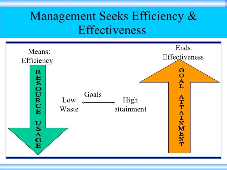 efficiency in management essays