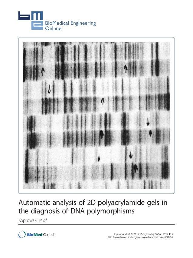 Automatic analysis of 2D polyacrylamide gels in the diagnosis of DNA polymorphisms Koprowski et al. Koprowski et al. BioMe...