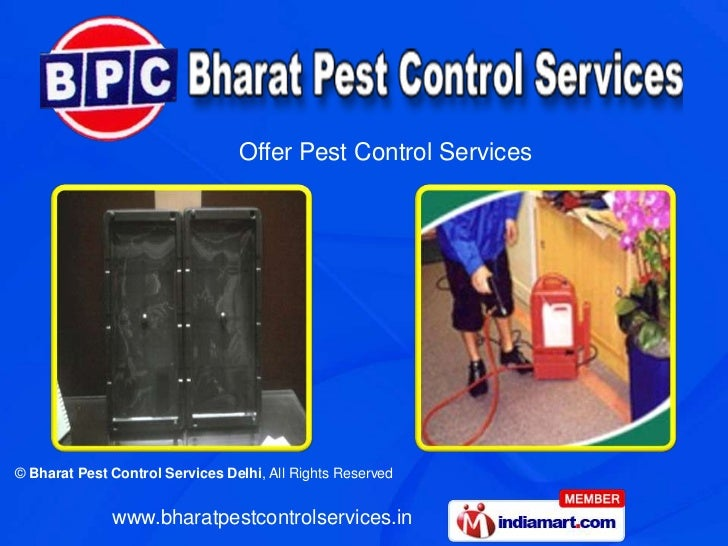 Offer Pest Control Services© Bharat Pest Control Services Delhi, All Rights Reserved              www.bharatpestcontrolser...
