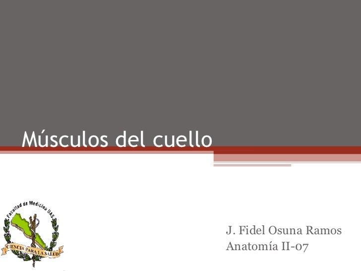 Músculos del cuello                      J. Fidel Osuna Ramos                      Anatomía II-07