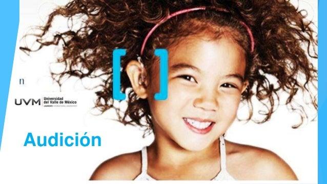 UVM Sistema Nervioso Sesion 14 Audicion