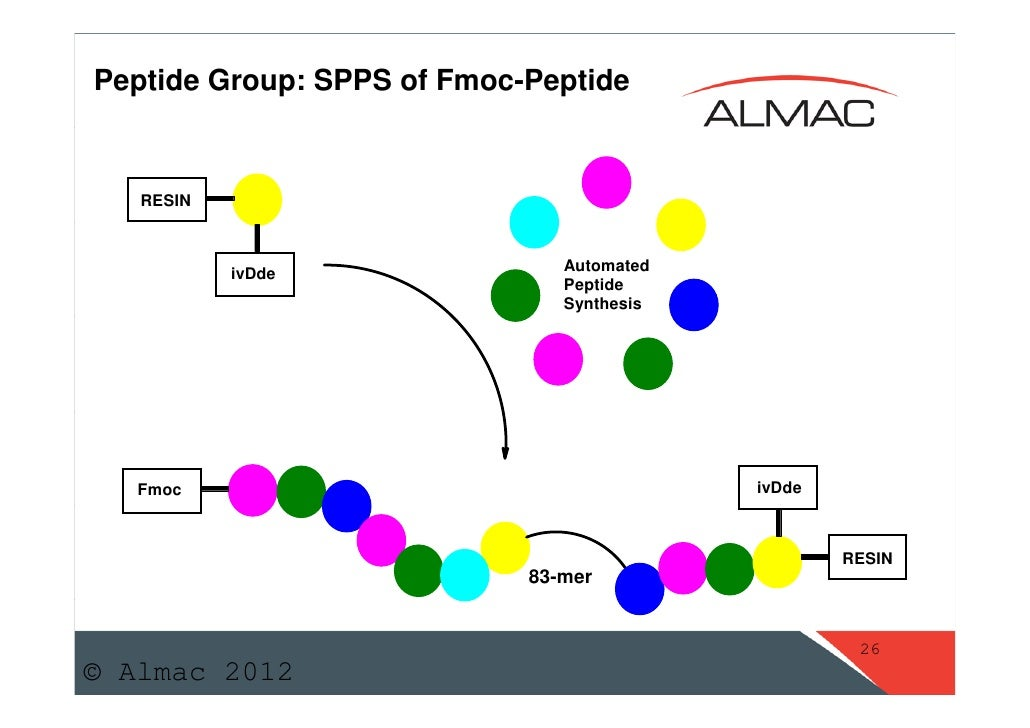peptide sythesis Peptide synthesis table of contents introduction design considerations modifications synthesis, cleavage, and extraction purification of peptides quality control.