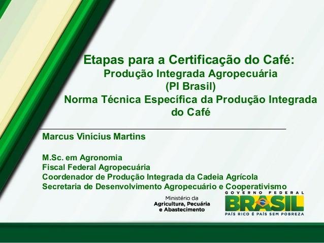 Etapas para a Certificação do Café: Produção Integrada Agropecuária (PI Brasil) Norma Técnica Específica da Produção Integ...