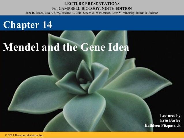 14 mendel and the gene idea