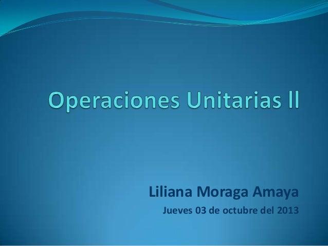 14)moraga amaya liliana 2013 2