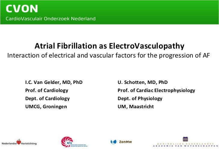 Atrial Fibrillation as ElectroVasculopathy Interaction of electrical and vascular factors for the progression of AF  I.C. ...