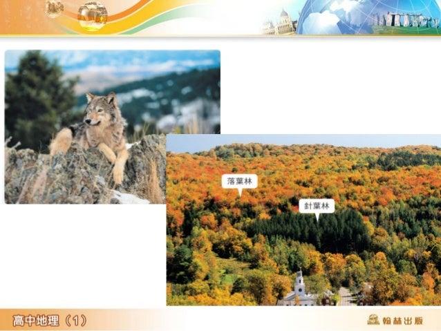 溫帶溼草原 名稱 氣候特 徵 生物 土壤 溼 草 原 鄰近溫帶 森林 1. 草類生長高度達 50 ~  100cm ,草根 深入地下 2. 草食性哺乳動物為優 勢物種,如北美洲的 野牛和麋鹿 3. 兔子與豚鼠等在地下 挖洞,攪拌有機質, 增加土...