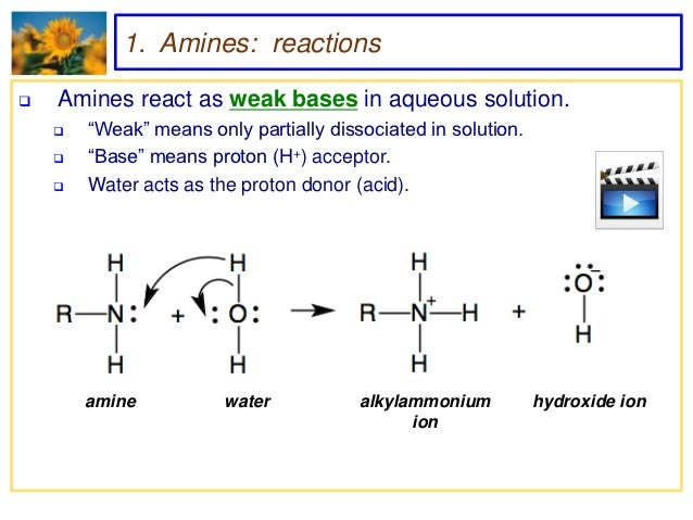amines and amines Amines are sub-classified as primary, secondary and tertiary based on the  degree of  hydrocarbon substituents (alkyl groups) while aromatic amines, more .