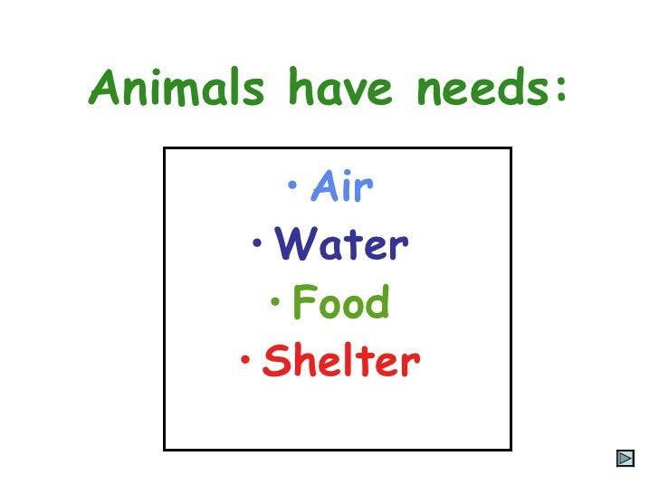 15 Animal Needs Presentation on Kindergarten Animals Worksheets Water