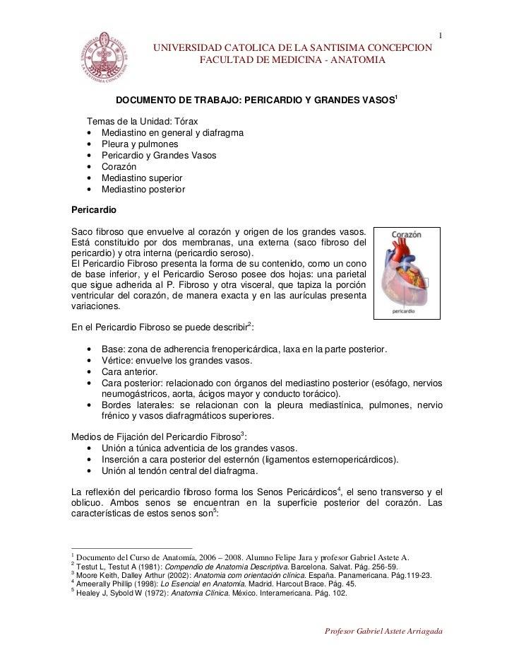 1                         UNIVERSIDAD CATOLICA DE LA SANTISIMA CONCEPCION                                 FACULTAD DE MEDI...