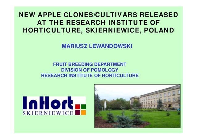 MARIUSZ LEWANDOWSKI FRUIT BREEDING DEPARTMENT DIVISION OF POMOLOGY RESEARCH INSTITUTE OF HORTICULTURE NEW APPLE CLONES/CUL...
