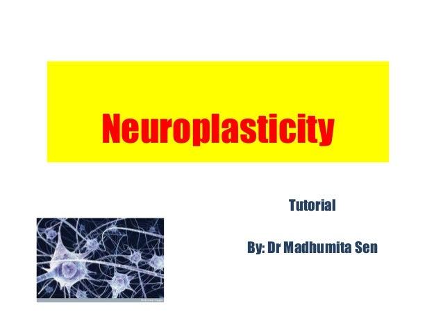 Neuroplasticity               Tutorial         By: Dr Madhumita Sen