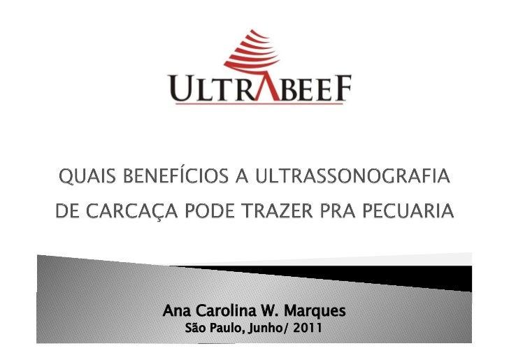 15 - ultrassonografia de carcaca - selecao e confinamento - ana carolina wider marques - ultrabeef