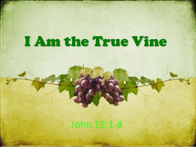 I Am the True Vine John  15:1-‐8