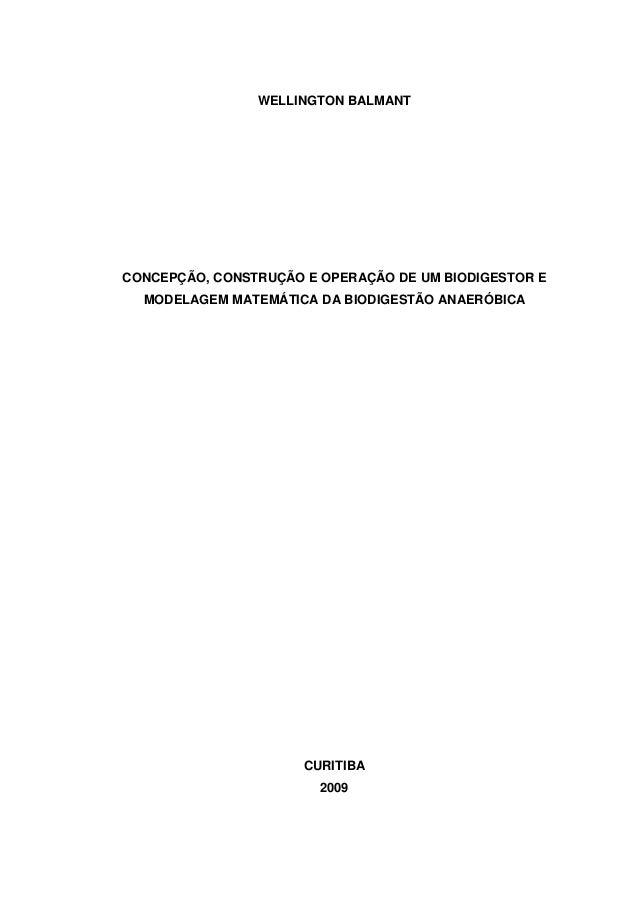 WELLINGTON BALMANT CONCEPÇÃO, CONSTRUÇÃO E OPERAÇÃO DE UM BIODIGESTOR E MODELAGEM MATEMÁTICA DA BIODIGESTÃO ANAERÓBICA CUR...