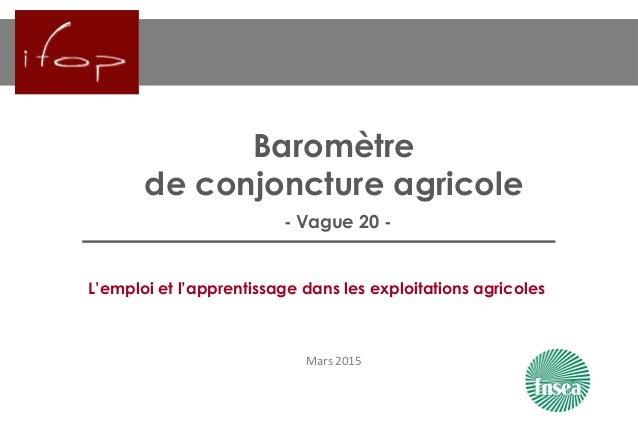 Baromètre de conjoncture agricole - Vague 20 - Mars 2015 L'emploi et l'apprentissage dans les exploitations agricoles