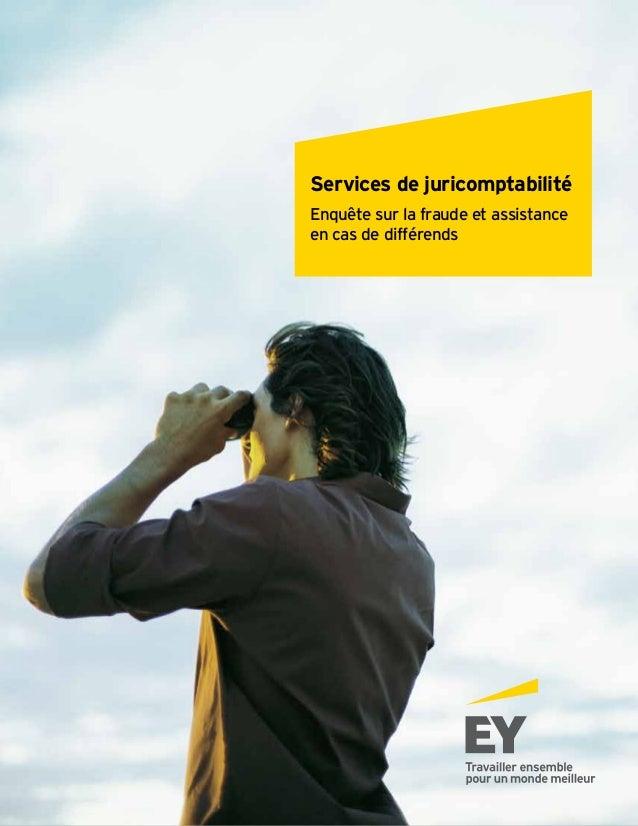 Services de juricomptabilité Enquête sur la fraude et assistance en cas de différends | 1 Services de juricomptabilité Enq...