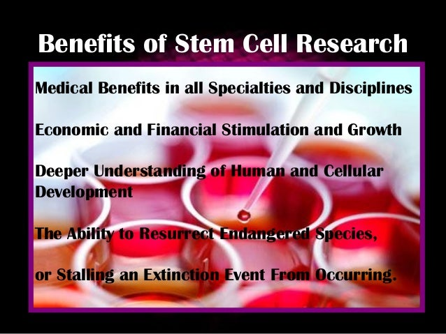 essays about stem cell research ethics