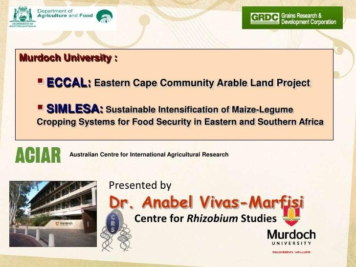Murdoch University :    ECCAL: Eastern Cape Community Arable Land Project    SIMLESA: Sustainable Intensification of Mai...