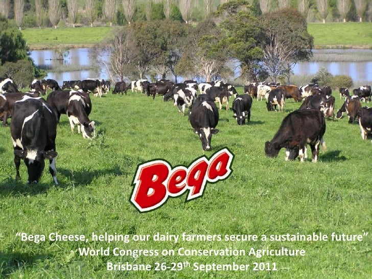 Bega Cheese Limited Porter Five Forces Analysis