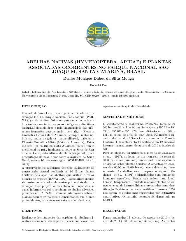 ABELHAS NATIVAS (HYMENOPTERA, APIDAE) E PLANTAS ASSOCIADAS OCORRENTES NO PARQUE NACIONAL SÃO JOAQUIM, SANTA CATARINA, BRASIL