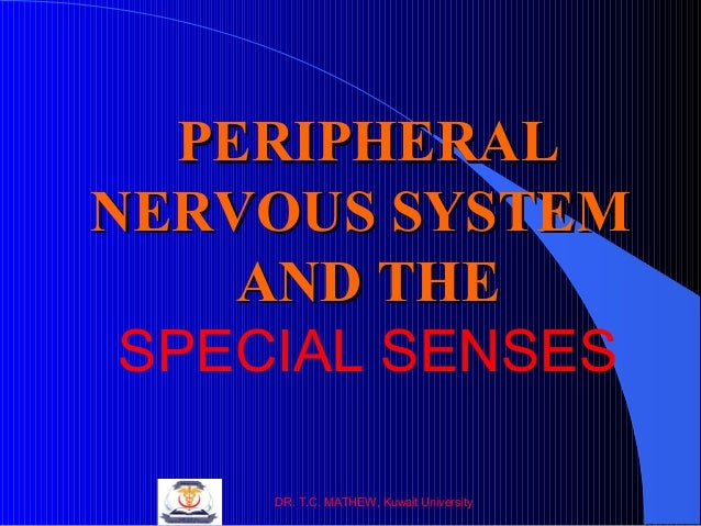 PERIPHERAL NERVOUS SYSTEM AND THE SPECIAL SENSES DR. T.C. MATHEW, Kuwait University