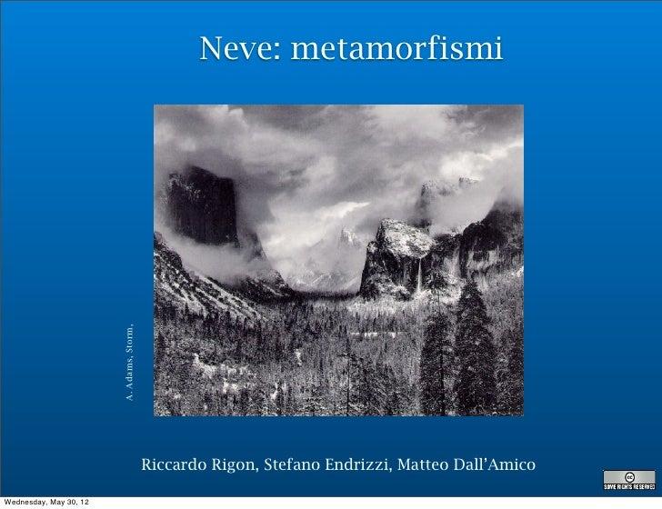 Neve: metamorfismi                        A. Adams, Storm,                                           Riccardo Rigon, Stefa...