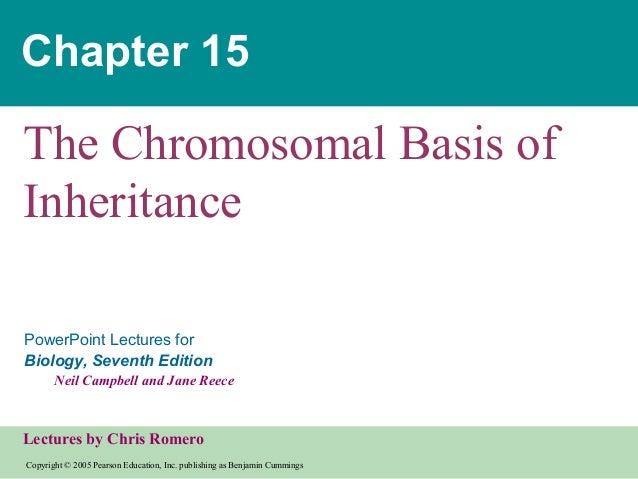 15  chromosomalinheritance text