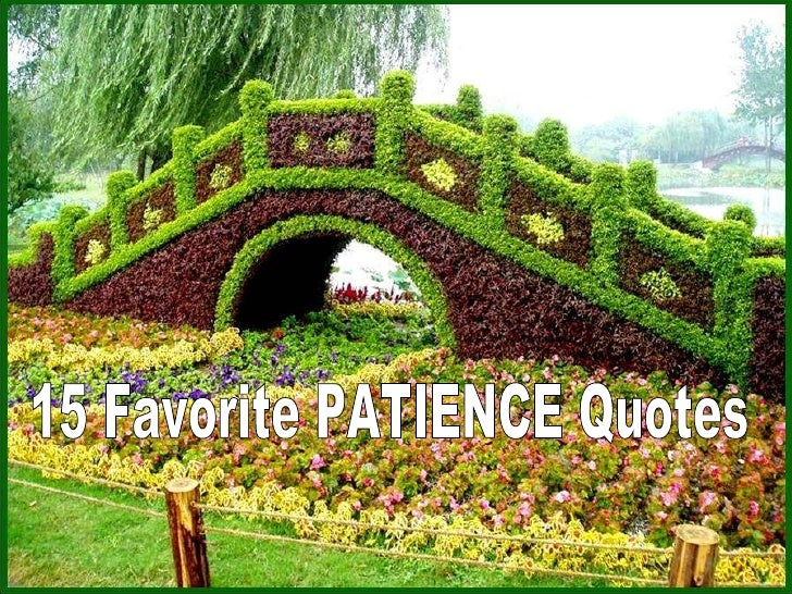 15 Favorite PATIENCE Quotes