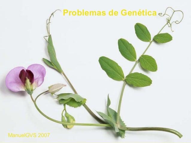 Problemas de GenéticaManuelGVS 2007