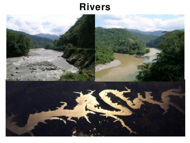 Rivers         Chapter 17