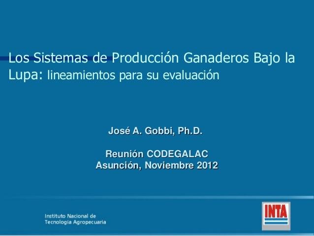 Los Sistemas de Producción Ganaderos Bajo laLupa: lineamientos para su evaluación               José A. Gobbi, Ph.D.      ...