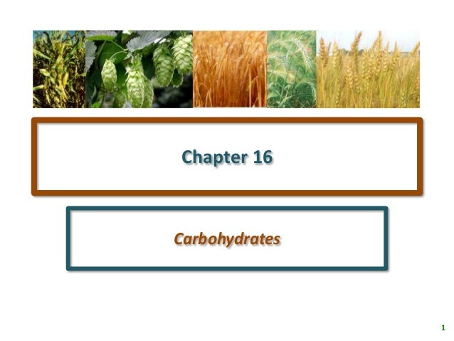 1Chapter 16Carbohydrates